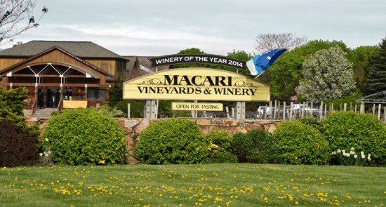 macari_vineyards_sm