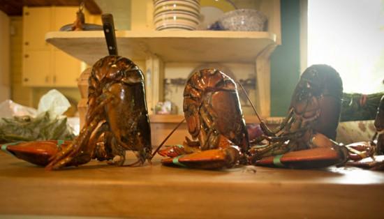 lobster_pasta02