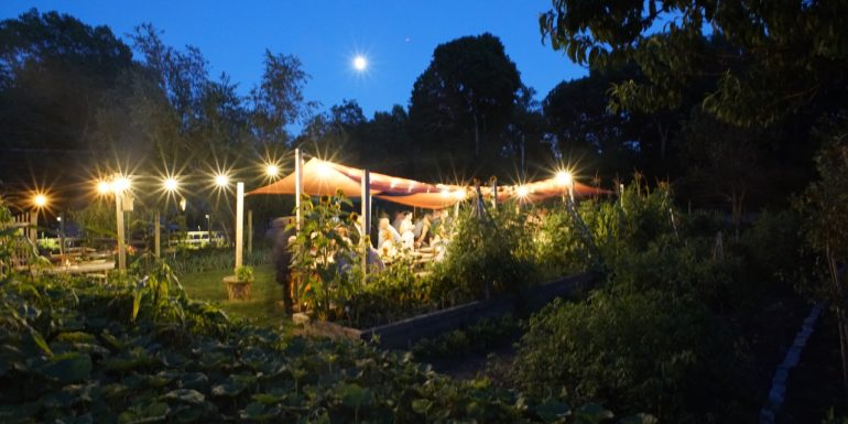 August 23, a perfect evening in the garden: Dinner for 46